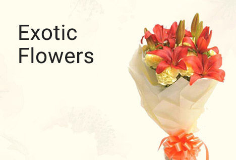 Exotic Flowers