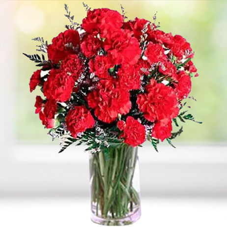 Carnations Online in Canada