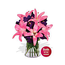 Pink Beauty: House Warming Flower Delivery in Australia