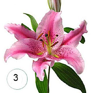3 Lilies of Affection BEH: Send Bhai Dooj Gifts to Bahrain