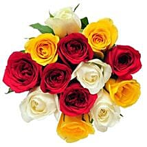 12 Mix Color Roses: Send Flowers to Canada