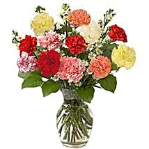 12 Multi color Carnations in Vase: Birthday Gifts to Montreal