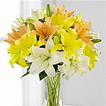 Simple Asiatic Lilies: Miss You Flowers in Canada