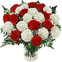 Carnation Fascination Colo: Gifts to Colombia