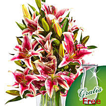 10 pink Stargazer Lilies in a bunch: Send Flowers to Hamburg
