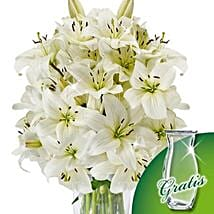 10 white lilies in a bunch: Mothers Day Flowers to Germany