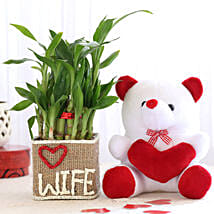 2 Layer Lucky Bamboo For Wife With Teddy Bear: Birthday Gifts for Wife