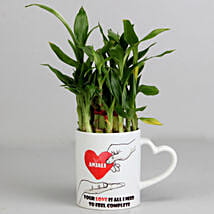 2 Layer Lucky Bamboo Plant in Heart Ceramic Mug: Plants to Pune