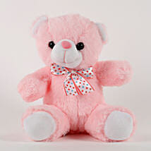 Cute Pink Sitting Teddy Bear: Soft Toys Gifts