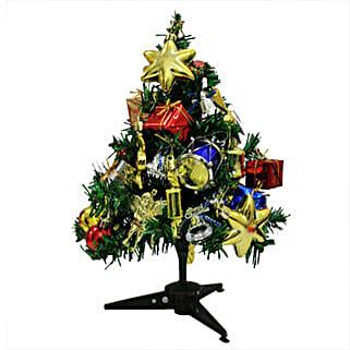 Delight your Christmas: Christmas Trees & Poinsettias