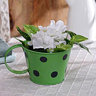 Green Polka Planter: Gardening Tools
