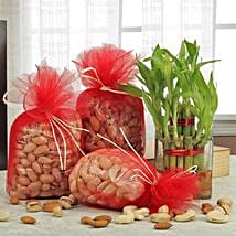 Love For Combo: Bhai Dooj Gift Hampers