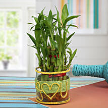 Love For Lucky Bamboo: Girlfriends Day Gifts
