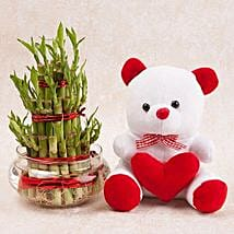 Love N Luck Combo: Plants for anniversary