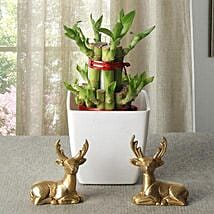 Lucky Bamboo With Deers: Send Lucky Bamboo to Bengaluru