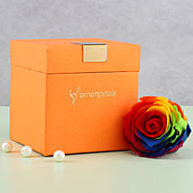 Mystic- Forever Rainbow Rose in Orange Box: