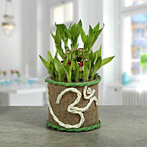Om Two Layer Bamboo plant: