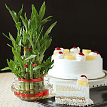 Pineapple Cake With Three Layer Bamboo Plant: cakes to Sonipat