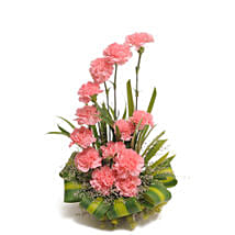 Pink Carnations Basket Arrangement: Gifts to Bangalore