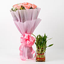 Pink Roses & Two Layer Bamboo Plant Combo: Send Flowers to Kiccha