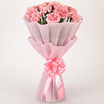 Pretty Pink Carnations Bouquet: Flowers to Amravati