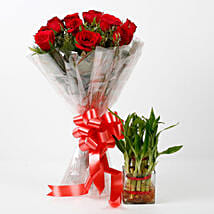 Red Roses & Two Layer Lucky Bamboo Combo: Gift Combos