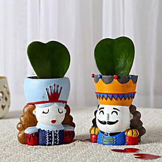Set of 2 Hoya Plants In King Queen Pots: Indoor Plants
