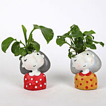 Set of 2 Lively Plants In Raisin pots: Buy Indoor Plants
