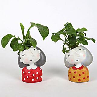 Set of 2 Lively Plants In Raisin pots: Indoor Plants