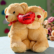 Special Hugging Teddy: Send Soft Toys