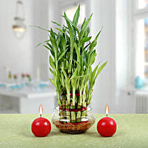 Three Layer Bamboo Plant With Red Candles: Send Good Luck Plants