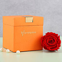 Timeless- Forever Red Rose in Orange Box: Send Flowers to Sivaganga
