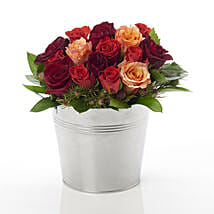A Rosy Bucket: Send Flowers to New Zealand