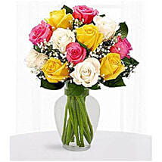 12 Multi Color Roses: Congratulations Flowers to Saudi Arabia