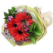 Red Gerbera Bouquet: Friendship Day Flowers in Singapore