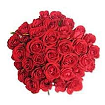 12 Red Roses in Cellophane SA: Send Romanic Gifts to South Africa