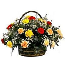 Rainbow Carnation Basket SA: Birthday Flower Delivery in South Africa