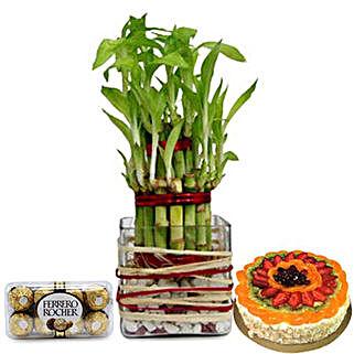 Lucky Sweet Combo: Indoor Plants to UAE
