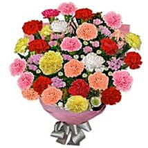 Carnation Carnival UKR: Gift Delivery in Ukraine