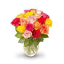18 stem Mixed Intermediate Rose Bunch: Friendship Day Flowers to USA