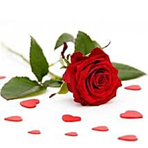 Single Red Roses: Send House Warming Flowers to USA