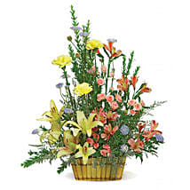 Sunshine Basket: Send Carnations Flowers to USA