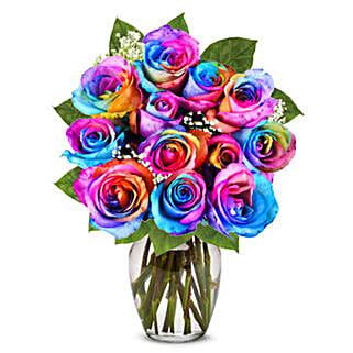 Two Dozen Wild Rainbow Roses: Send Roses to USA